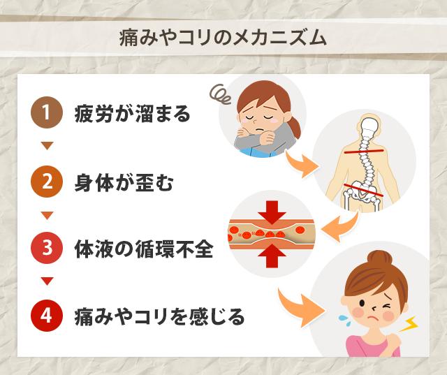 痛みやコリのメカニズム 1疲労が溜まる 2身体が歪む 3体液の循環不全 4痛みやコリを感じる